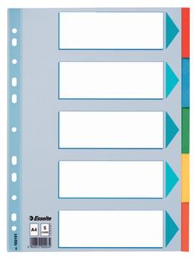Esselte tabbladen, voor ft A4, uit karton, 5 tabs, geassorteerde kleuren